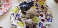 Группа раннего развития детей - Лепка из глины